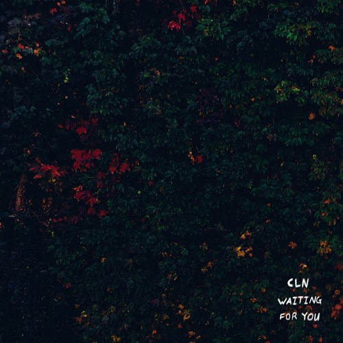 cln Waiting For You artwork faeton music