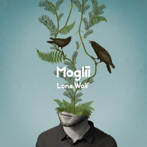 Moglii - Lone Wolf ft. Novaa (artwork faeton music)