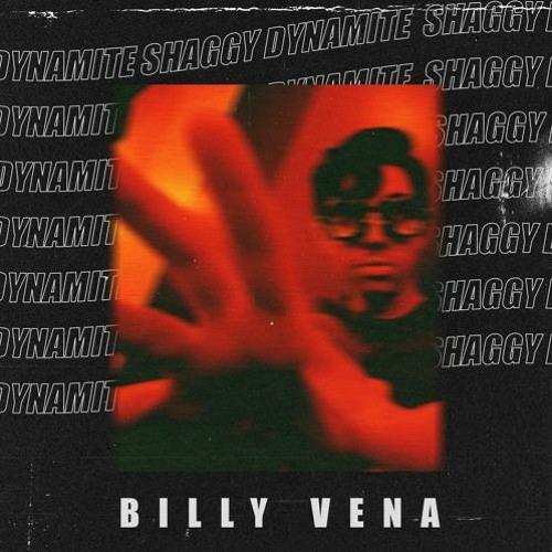 Billy Vena - Shaggy Dynamite (artwork faeton music)