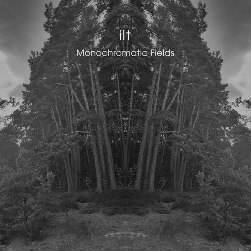 ilt - Monochromatic Fields (artwork faeton music)